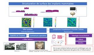 Les instituts Carnot ARTS et MICA permettent au Groupe Sebbin de se situer à l'avant-garde des recherches sur la structuration de surface de ses implants mammaires